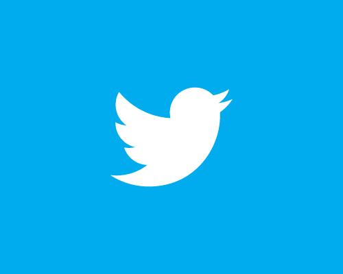 Resultado de imagen para boton twitter