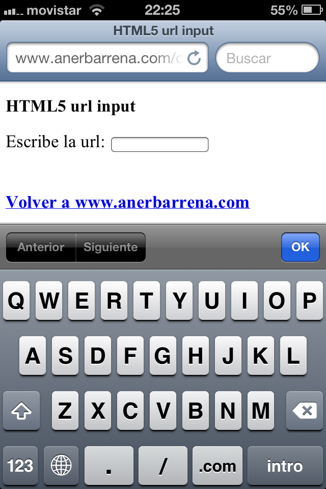 HTML5 url input