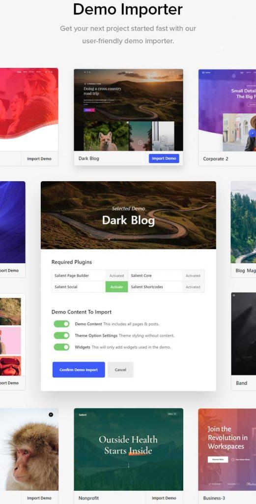 Salient WordPress Theme Demos